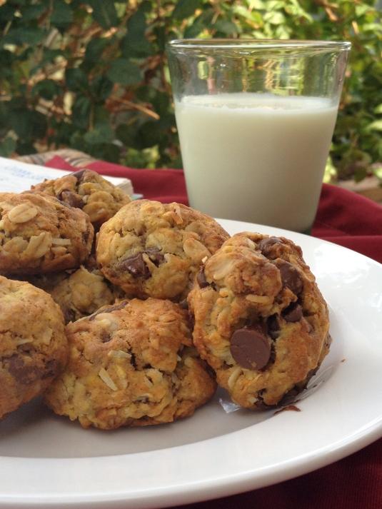 Dark Chocolate Orange Coconut Cookies